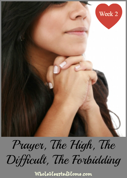 Prayer: The High, The Difficult, The Forbidding + Linkup #115