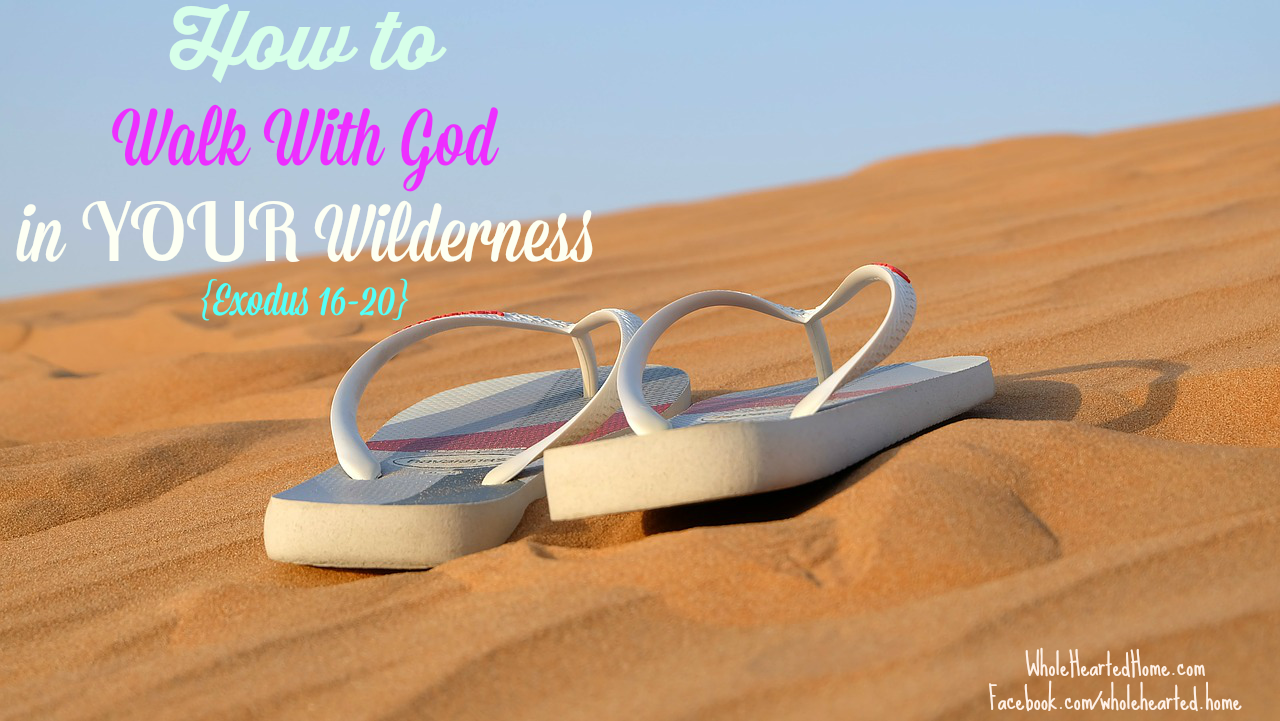 How To Walk With God in YOUR Wilderness {Exodus 16-20}