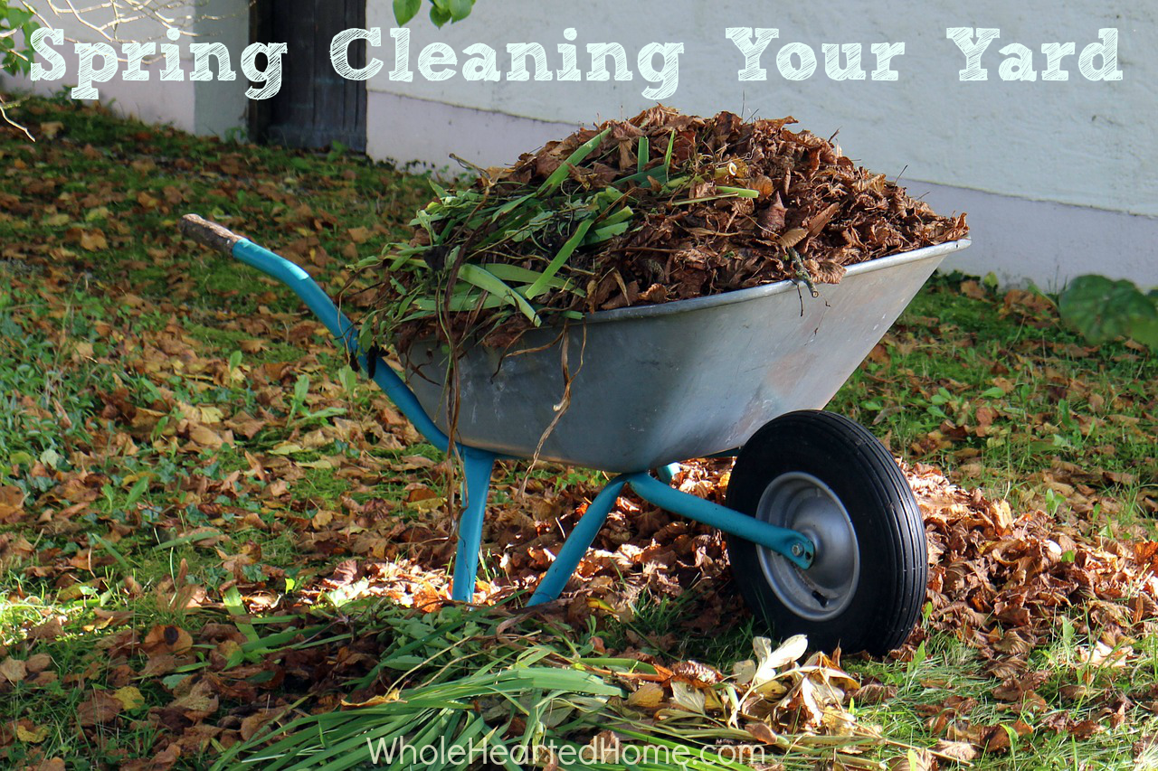 Spring Cleaning Your Yard