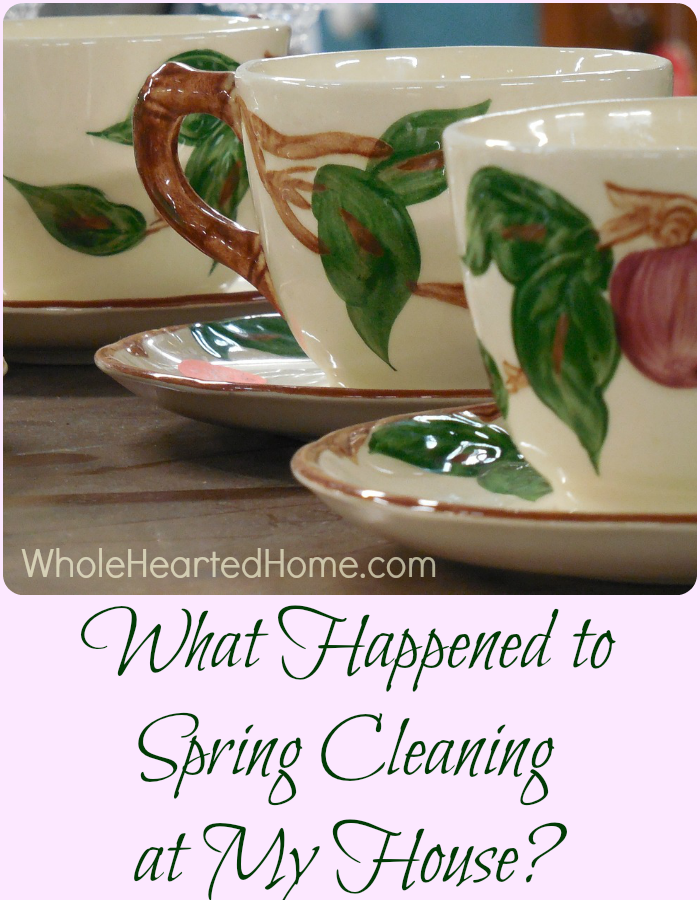 What Happened to Spring Cleaning at My House?