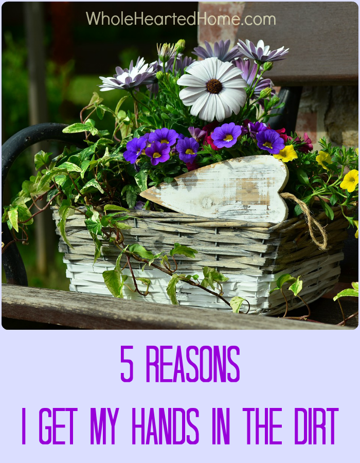 5 Reasons I Get My Hands in the Dirt + WholeHearted Wednesday #148