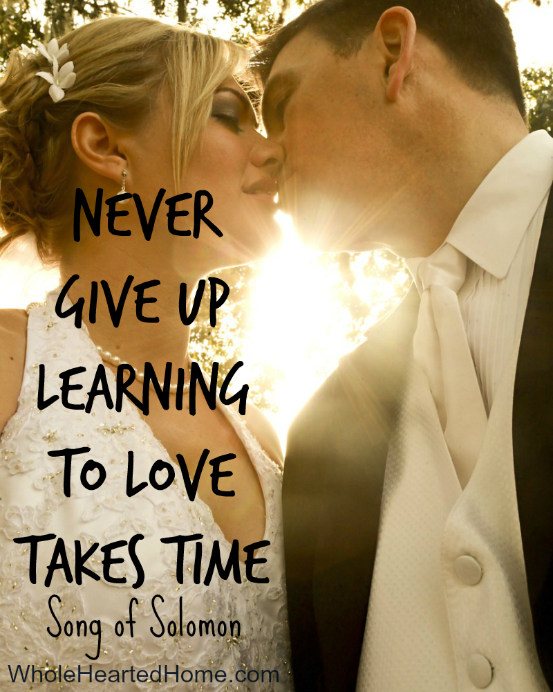 Never Give Up, Learning to Love Takes Time