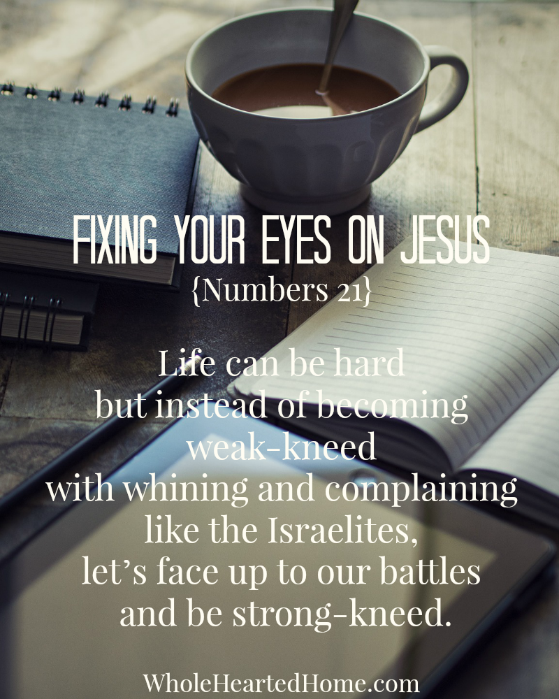 Fixing Your Eyes on Jesus {Numbers 21}