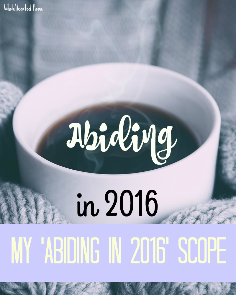 My 'Abiding in 2016' Scope