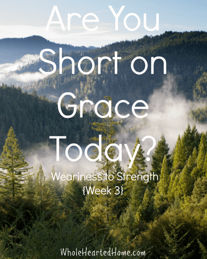 Are You Short on Grace Today Weariness to Strength {Week 3}