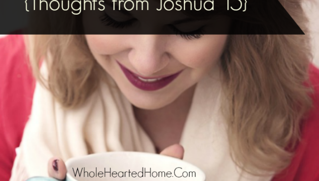Give Me a Blessing {Thoughts from Joshua 15 that will Stregthen You}